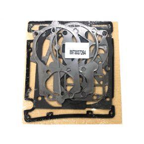 Pakkingset voor pomp B5900